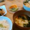 筍と弘法菜