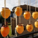 今年も作りました!干し柿!!
