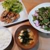 野菜の肉巻き、もものすけと春菊のサラダ