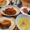 鶏肉トマトソース煮、ピロシキ
