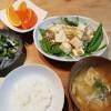 豆腐のうま煮、きゅうりとわかめの酢の物の献立