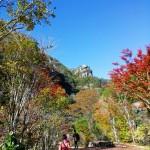 秋の蓼科&昇仙峡