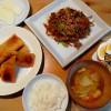 豚肉とごぼうの炒め物、春雨サラダ