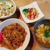 牛丼とサラダ2種