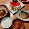 鯖の味噌煮、ささみの春巻き